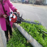 球型花树修剪机 园林灌木修枝机 汽油双刃绿篱机
