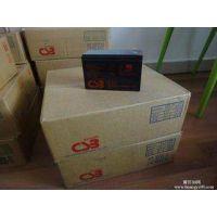 CSB蓄电池GP121000厂家