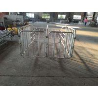 加高加宽的母猪定位栏啥价格 利祥农牧养猪设备