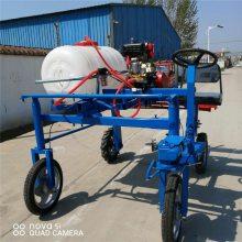 故障率低的农药喷雾机 富兴玉米地杀虫打药机 弥雾式喷药机性能