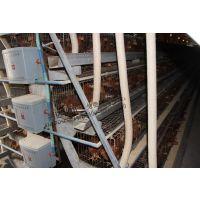 落料软管 蛋鸡自动喂料机专用  自动化养鸡设备厂家直销