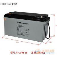 复华电池6-GFM2V-1200官方报价正品供应热火销售