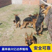 嘉祥县兴亿达小德牧犬狗宝宝生态养殖园
