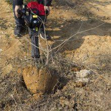 苗木移植断根机 汽油多功能挖树机 铲头式起树机