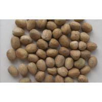 亳州巴豆价格 巴豆产地直销一手货源