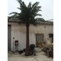 仿真中东海枣树假树 仿真树 假棕榈树 热带植物假树