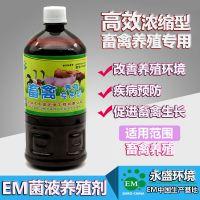 EM益生菌畜禽养殖专用促进畜禽生长EM原液厂家直销EM菌种提高免疫