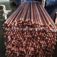 优质避雷接地棒 定制防雷设备铜包钢接地极电镀铜接地棒货源批发