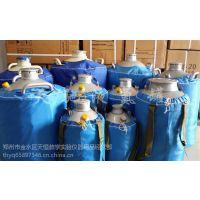 日照 天驰 胚胎储存容器 YDS-20L 液氮储罐价格