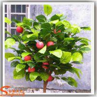 仿真苹果树价格 定做人造假果树 真杆仿真苹果树