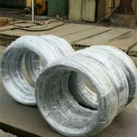 加工定制 圆形镀锌铁丝 圣诞礼品专用镀锌铁线 工艺品丝 质量高