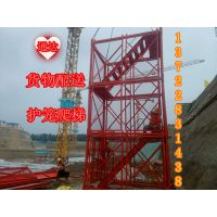 供应网面安全爬梯带网双梯通达总厂可量身定做