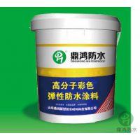供应高分子彩色弹性体防水涂料厂家 鼎鸿