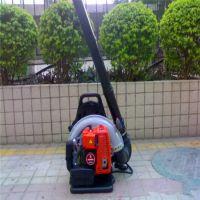 唐山马路汽油吹叶机 道路养护用吹风机 厂家热销