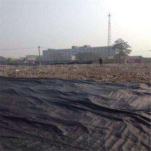 公路防尘网 多用途盖土网 两针绿色盖土网
