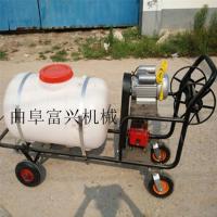 远射程手推打药机 富兴医院防疫喷药机 茶园种植植保机械性能