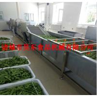 高效率芸豆清洗机 连续式芸豆清洗设备厂家