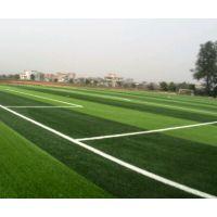 篮球场,足球场,运动地面材料