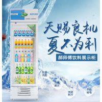 单门展示柜冷藏立式饮料柜冰柜冰箱啤酒柜展示保鲜柜水果蔬菜柜