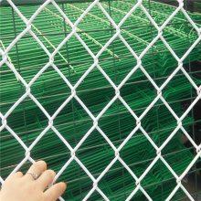 勾花网护栏网 菱型勾花网 球场围网厂家
