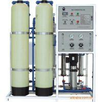 天津天一净源0.5t/h双级反渗透纯净水设备优质的产品