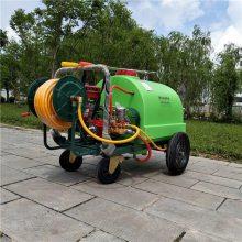 志成热销300升汽油推车打药机果园专用杀虫喷雾器园林绿化高压喷药设备