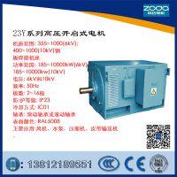 中达供应Y系列6KV 供应Y,YKS,YKK系列高压电机10KV厂家zoda