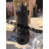 天津方泉自动搅匀潜水排污泵-大口径排污泵-大功率排污泵