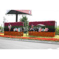 浙江杭州墙面绿化花盆 植物墙垂直绿化墙花盆