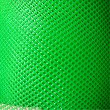 纯料塑料平网 汽车靠垫网 高效养殖网