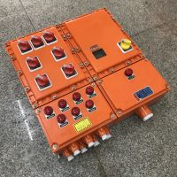 防爆动力配电箱(动力检修) BXX51-12K225 德力西元件