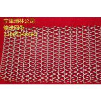 厂家直销304不锈钢耐磨耐高温餐饮设备网带乙型网带