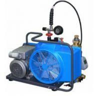 大家好,给大家介绍一下,这是我的呼吸器充气泵@宝华充气泵