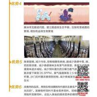 发酵剂代工|发酵剂|君安生物(在线咨询)
