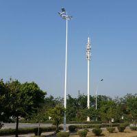 莞城操场LED灯夜间图 庭院灯柏克批发零售 道路灯杆用电多少