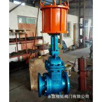 电动排渣节流阀 PL941H-16C