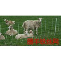 晟卿洛阳山林圈地专用绿色养殖铁丝围栏网多钱一卷
