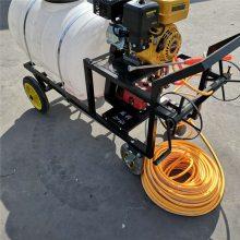 安徽汽油高压喷雾器 手推式农田打药机 果园喷药机