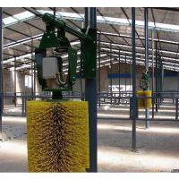 甘肃宾利达专业生产牛体刷,优质牛体刷批发
