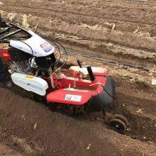 小型农业机械开沟机 土豆种植培土机 志成186柴油田园管理机操作简单