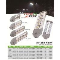 LED模组路灯厂家供应 多功率室外照明灯优惠价格