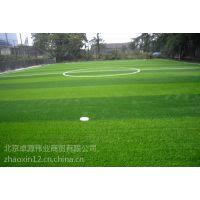 北京出售假草皮草坪厂家仿真草皮厂家
