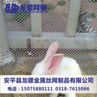 养鸡养殖网 网格养殖塑料平网 鱼塘塑料网