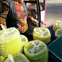 玉米空心棒麻花四缸膨化机 家用小型面粉辣条膨化机休闲食品设备批发