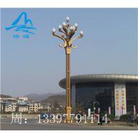 新款公园30WLED中杆灯 花园灯 广场灯 湖南浩峰照明 厂家直销价 高质量 可定制