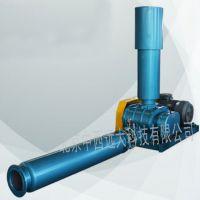 中西(LQS促销)罗茨鼓风机 型号:HL11-WSR-50库号:M203502