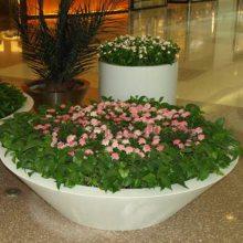 玻璃钢仿汉白玉户外园林景观大花盆 大型花托盆定制 广州户外绿植花器厂家
