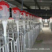 厂家供应全套自动化养殖养猪设备 自动料线