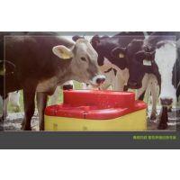 自动加热饮水槽 全自动畜牧饮水设备 养殖水槽