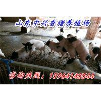 http://himg.china.cn/1/4_80_236778_600_400.jpg
